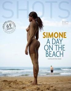 SimoneADayOnTheBeach-cover