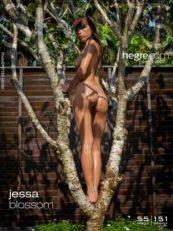 Hegre.com – Jessa blossom